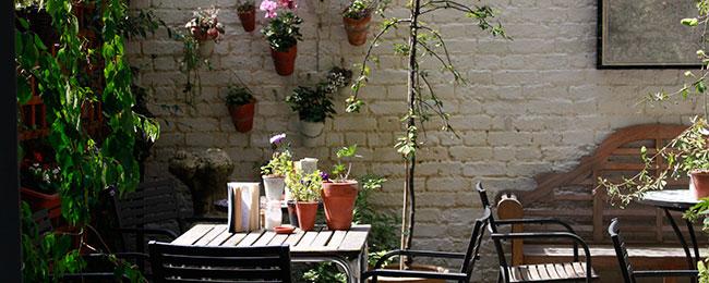 Cafe and Garden Courtyard
